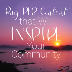 3 Fun Ways To Use PLR